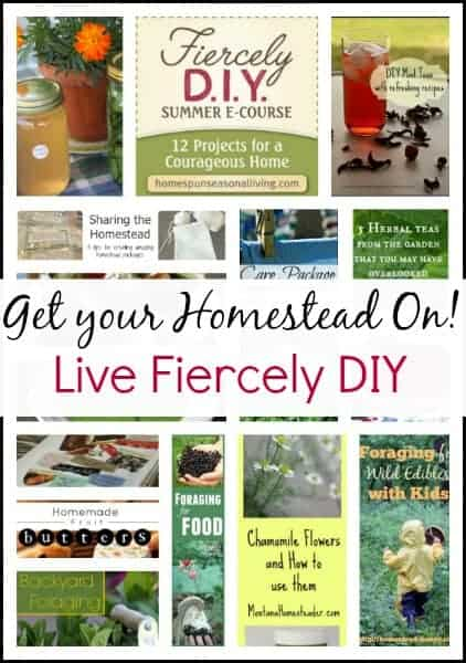 Live Fiercely DIY l 12 Projects for a courageous DIY home l Homespun Seasonal Living l Homestead Lady