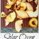 Solar Oven: Making Apple Chips