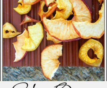 Use Your Solar Oven as a Food Dehydrator to Make Apple Chips l Preserve food with your solar oven l Homestead Lady (.com)