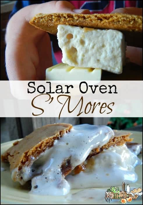 Solar Oven S'mores l Save your burned fingers and bake these up all at once l Homestead Lady (.com)