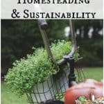 Homesteading and Sustainability: Are you In?