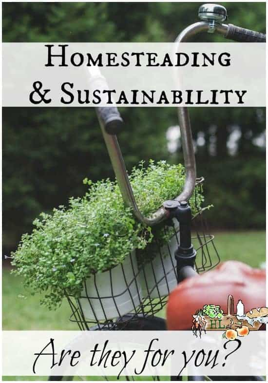 Homesteading and Sustainability l Apply these simple steps this month and increase your self-sufficiency l Homestead Lady.com