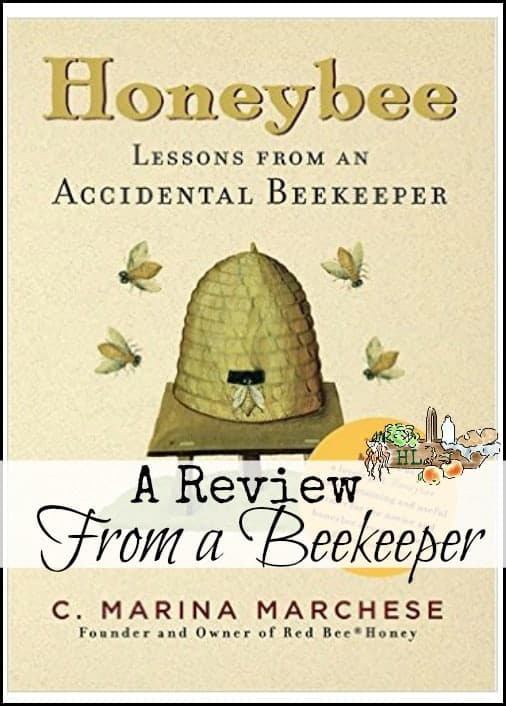 Honeybee by Marina Marchese l Thinking about getting bees but you're just not sure? l Book review l Homestead Lady (.com)