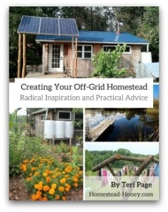 Creating-Your-Off-Grid-Homestead