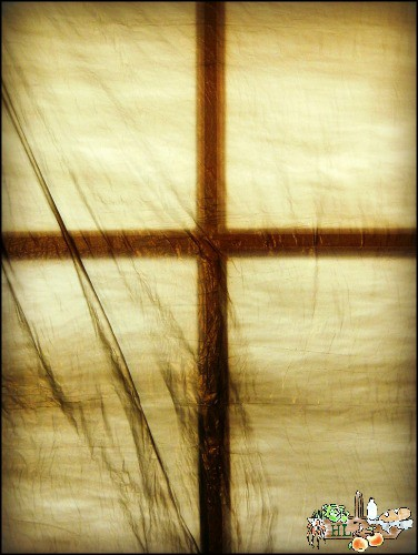 Maundy Thursday l Allow the dark to celebrate the Light this Easter l Homestead Lady (.com)