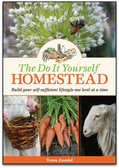 The Do It Yourself Homestead by Tessa Zundel l Your Homestead Guide Book l 4 Levels of Homesteading l 8 Topics and More