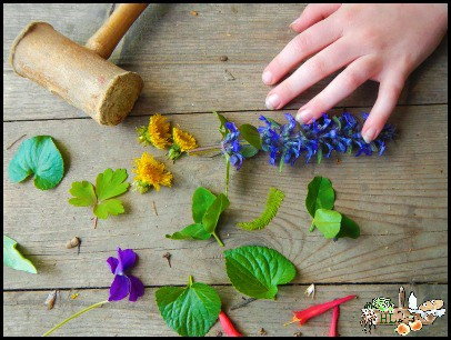 Foraging With Kids l Botanical Prints l Gather flowers and leaves to pound into art l Homestead Lady (.com)