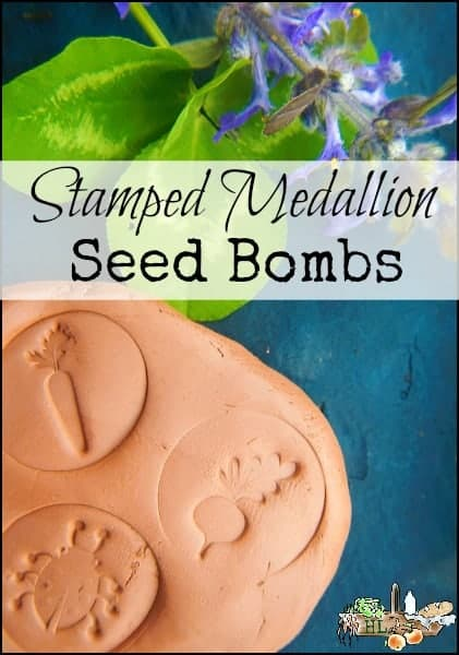 Stamped Medallion Seed Bombs l An easy DIY for clay seed balls l Fun for the kids! l Homestead Lady (.com)