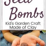 Stamped Medallion Seed Bombs