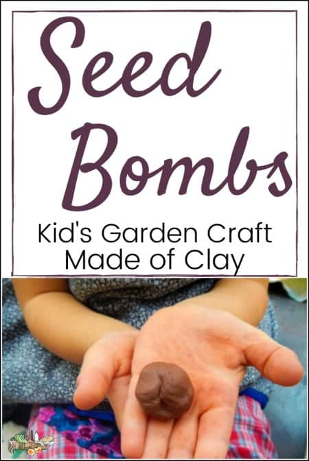 hands holding clay seed bomb