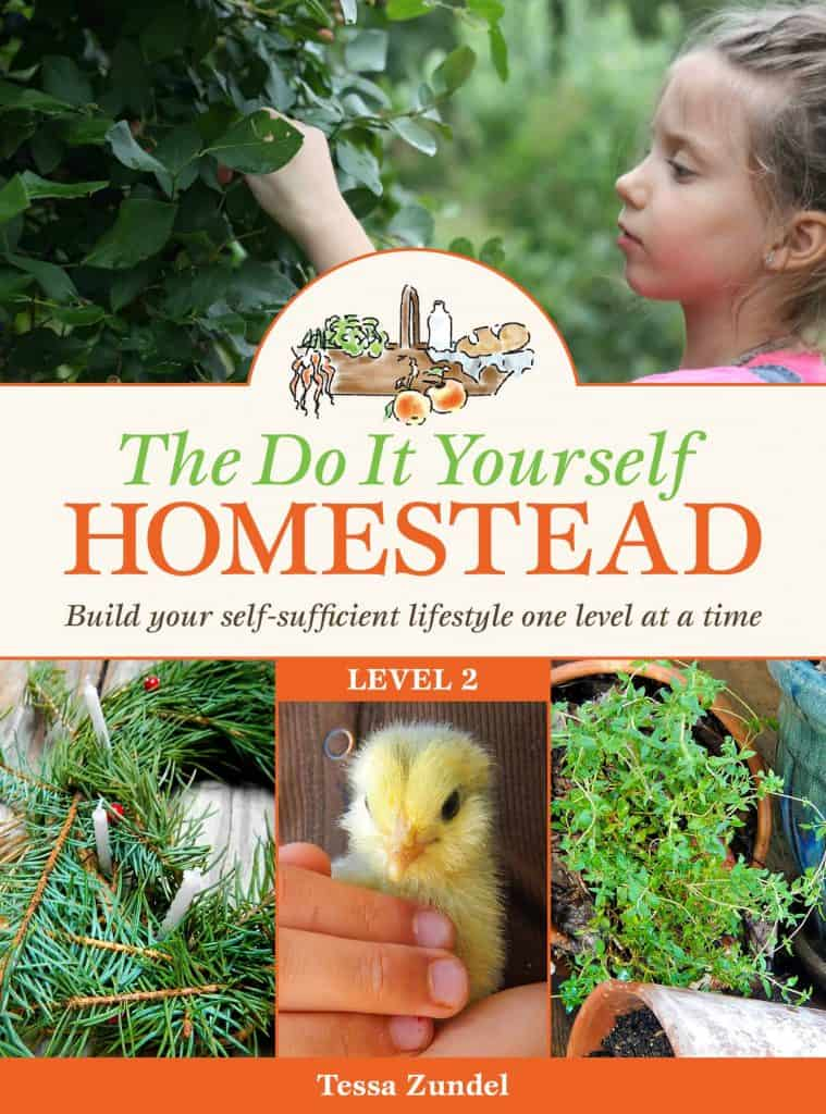 The DIY Homestead: Level 2