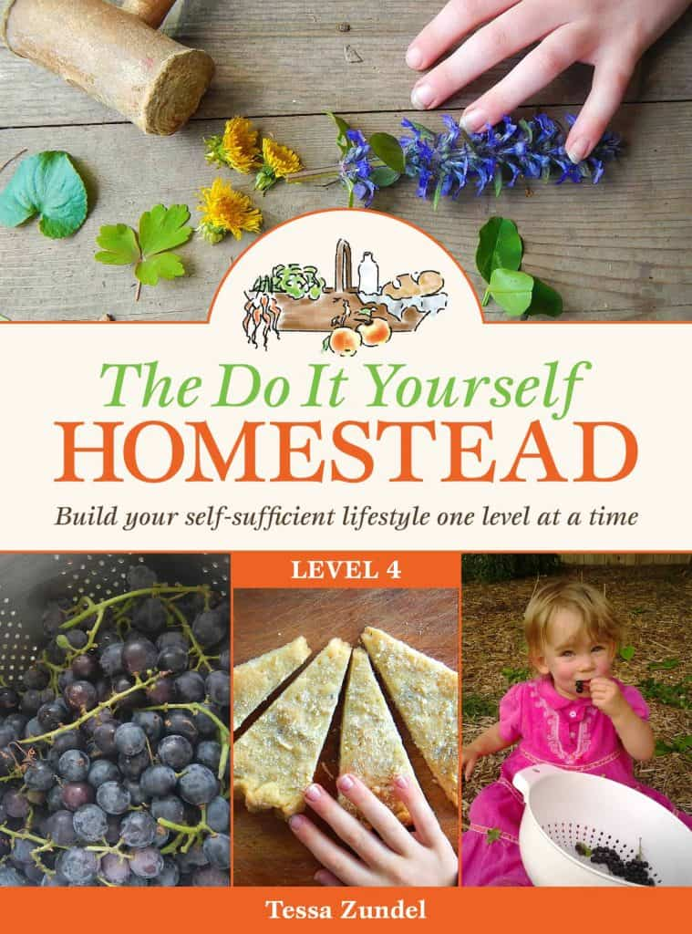 The DIY Homestead: Level 4