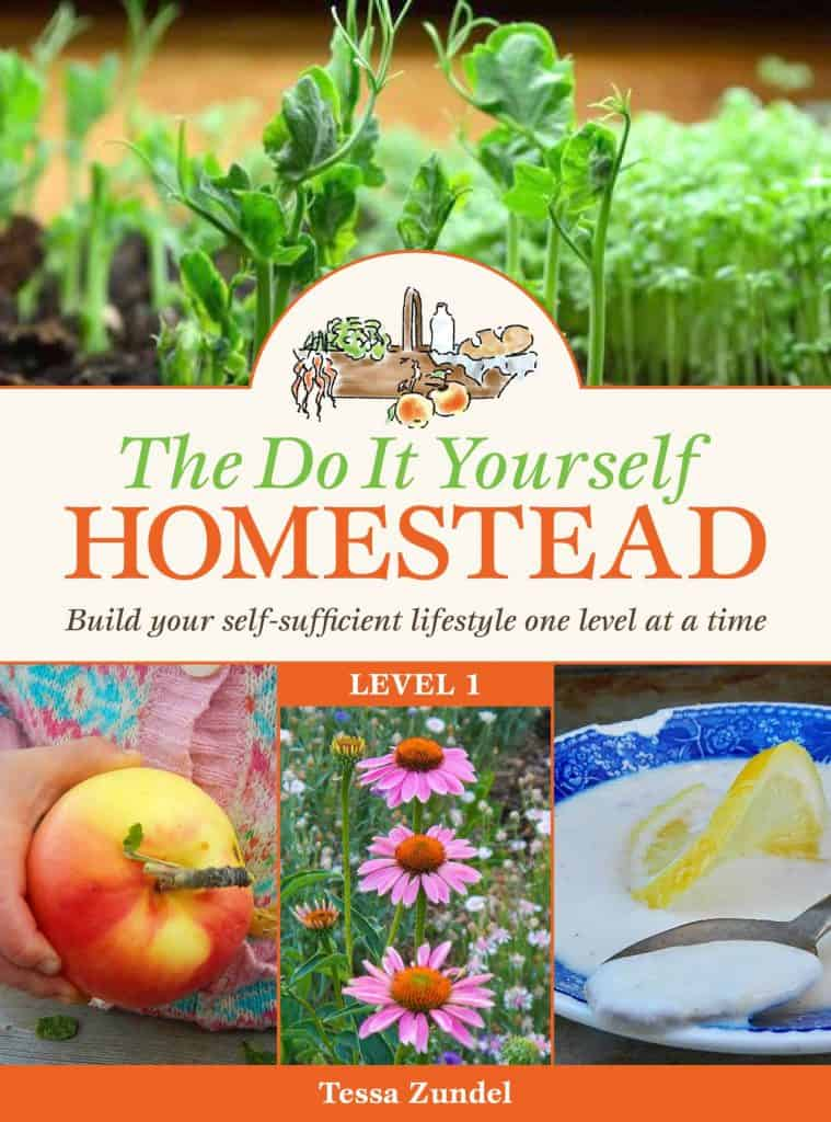The DIY Homestead: Level 1