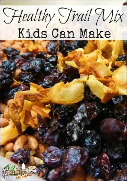 Healthy Trail Mix Kids Can Make l With gluten free options and instructions to completely DIY it l Homestead Lady (.com)