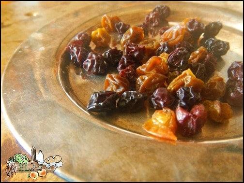 Make Your Own Organic Raisins l Homestead Lady (.com)