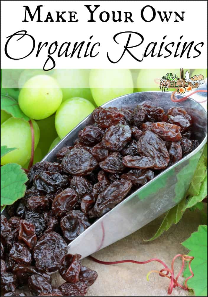 Make Your Own Organic Raisins