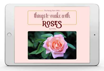 Rose eBook