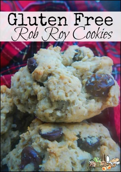 Gluten Free Rob Roy Cookies l These can even be baked over an open flame l Homestead Lady (.com)