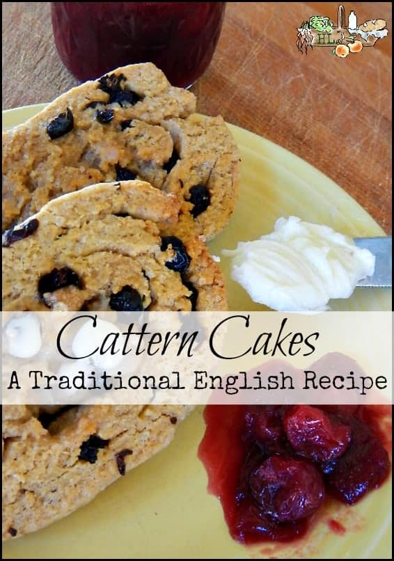 Cattern Cakes l A traditional English recipe l Suitable for breakfast or treat l Homestead Lady (.com)