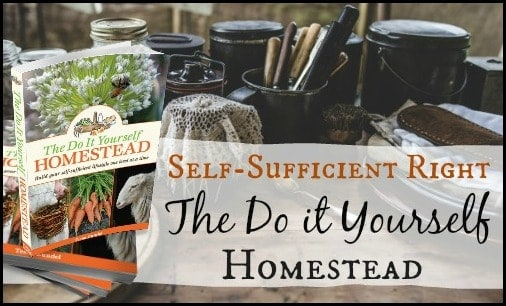 The Do It Yourself Homestead l Homesteading Sustainability DIY Grow Your Own l Homestead Lady