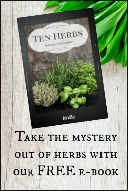 Ten Herbs from Garden to Plate l Newsletter Free E-book l Homestead Lady.com