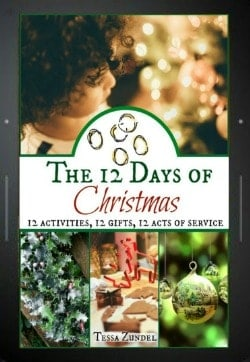 12 Days of Christmas l E-Book l Homestead Lady.com