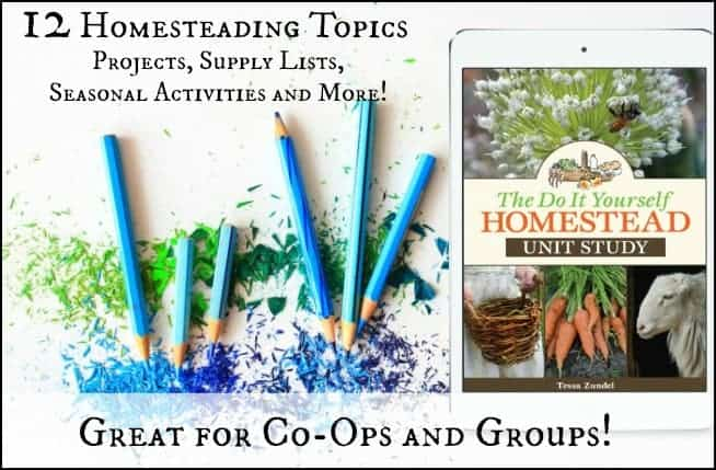 The Do It Yourself Homestead Unit Study l Homeschool, School Supplement, Kids Activities l Homestead Lady.com