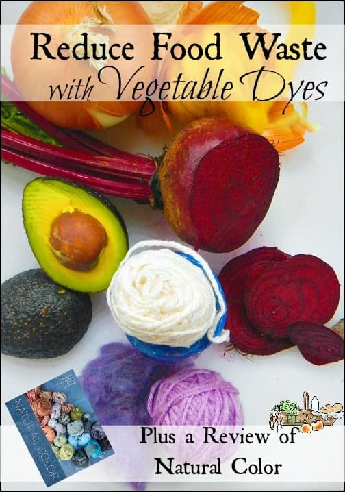 Reduce Food Waste with Vegetable Dyes l Create color from your compost bin with these tips and Natural Color by Sasha Duerr l Homestead Lady.com
