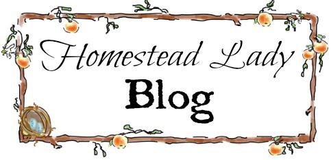 Homestead Lady Blog redirect from Paypal l Homesteadlady.com