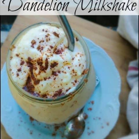 chocolate dandelion milkshakes