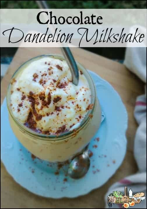 Chocolate Dandelion Milkshake Recipe l Kick the coffee habit with healthy dandelion milkshake l Cocoa and both broth powders, too l Homestead Lady.com