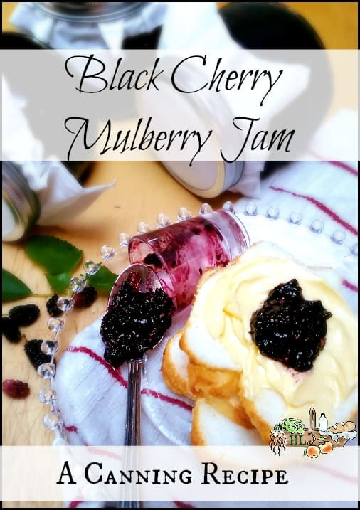 Black Cherry Mulberry Jam l Home grown or foraged mulberries with tart dark cherries for a healthy home-canned jam recipe l Homestead Lady.com
