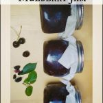 Canning Recipe: Dark Cherry Mulberry Jam