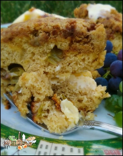 Grape Coffee Cake with Crumble Topping l Breakfast Recipe l Homestead Lady.com