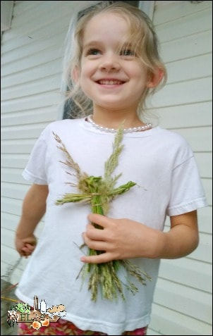 Grass Doll Natural Craft l Make a doll into a fairy with this natural craft for kids l Homestead Lady.com