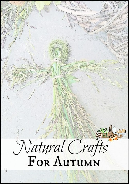 Natural Crafts for Fall l Tutorials and suggestions for natural crafts for the whole family l Homestead lady.com