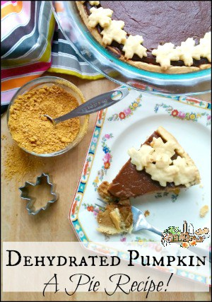 Dehydrated Pumpkin Pie Recipe l Use Powdered Pumpkin to Make Pie l Homestead Lady.com