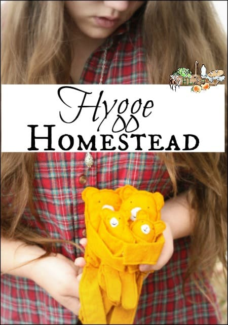 Homestead Hygge l Cancel chaos on the homestead create cozy comfort l Activities for adults and children in simple steps l Homestead Lady.com