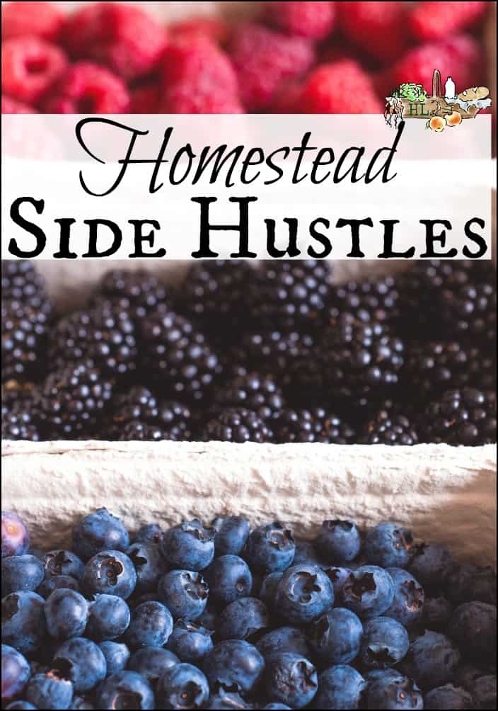 Homestead Side Hustles l Over 25 Ways to Make Money on the Homestead l Tips, pitfalls and advice l Homestead Lady.com