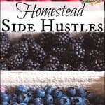 Homestead Side Hustles
