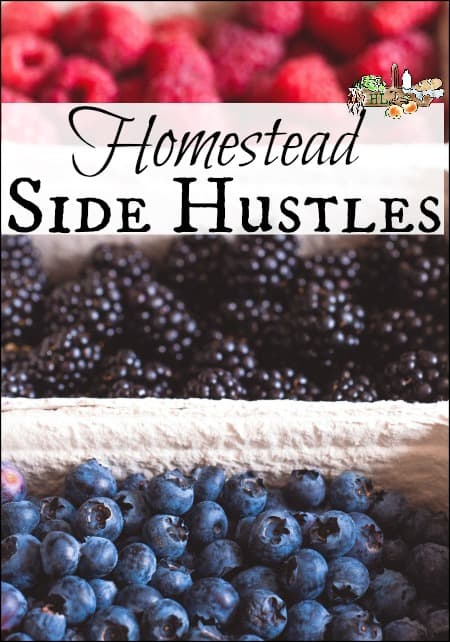 Homestead Side Hustles l Over 25 ideas on making money on the homestead l Information, advice, tips and troubleshooting l Homestead Lady.com