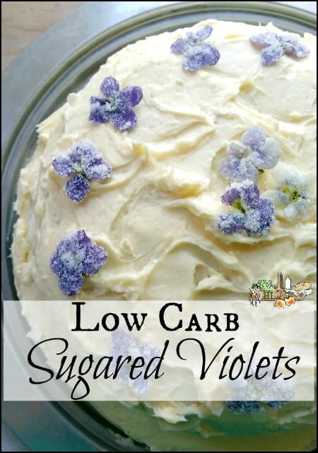 Lower Carb Sugared Violets l Use low carb sugars to make sugared violets for lovely baking and decorating l Homestead Lady.com
