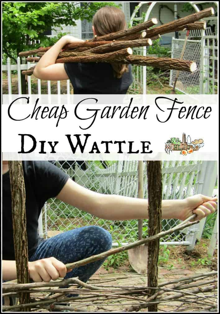 DIY Wattle: Cheap Garden Fence