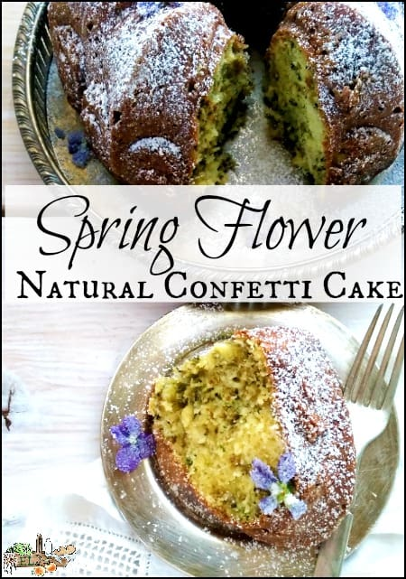 Spring Flower Natural Confetti Cake l Use foraged spring blooms like violets and red bud and make natural confetti cake l Homestead Lady.com