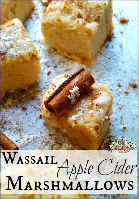 apple cider marshmallows with cinnamon stick