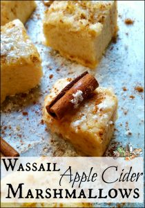 apple cider marshmallows with cinnamon sticks