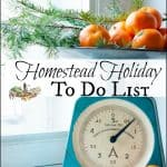 Homestead Holiday To Do List