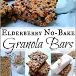 Elderberry No Bake Granola Bars