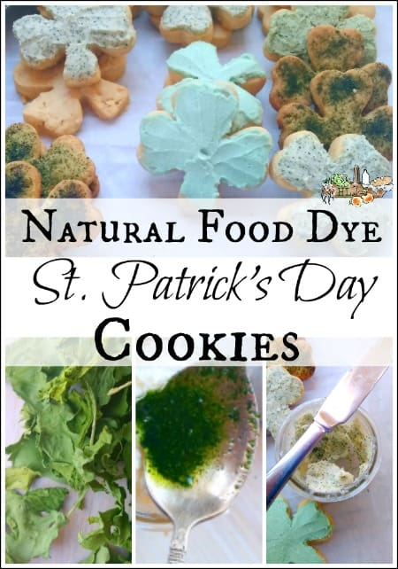 shamrock cookie with dried green powder