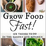 Grow Food Fast – Kitchen & Garden